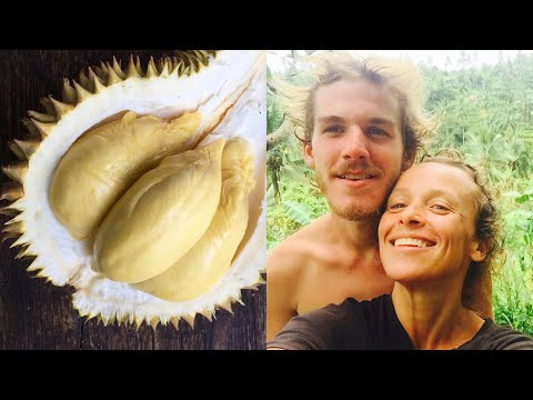 DURIAN IS OUR DRUG (eating world's smelliest fruit in Bali)