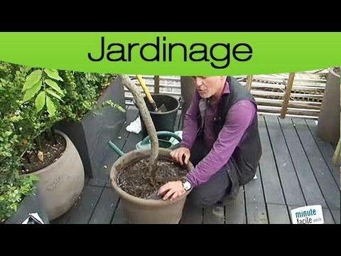 astuces jardin entretenir ses plantes en pot youtube. Black Bedroom Furniture Sets. Home Design Ideas