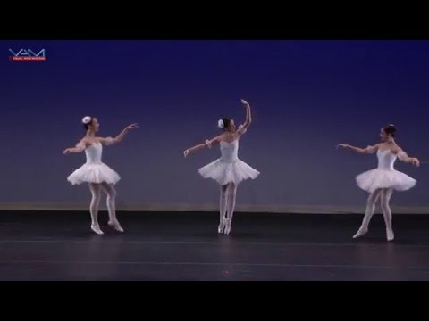 Instituto Superior de Arte Teatro Colon - Pas de Trois from The Nutcracker