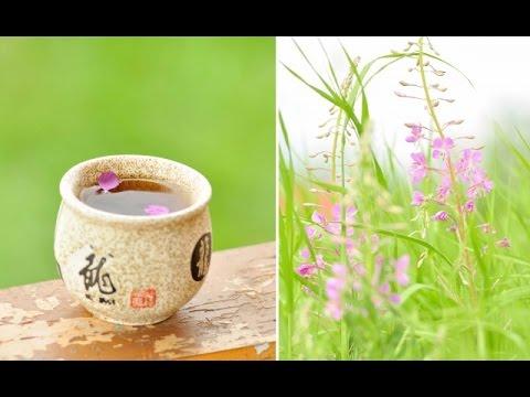 Интернет-магазин копорского чая, купить иван-чай