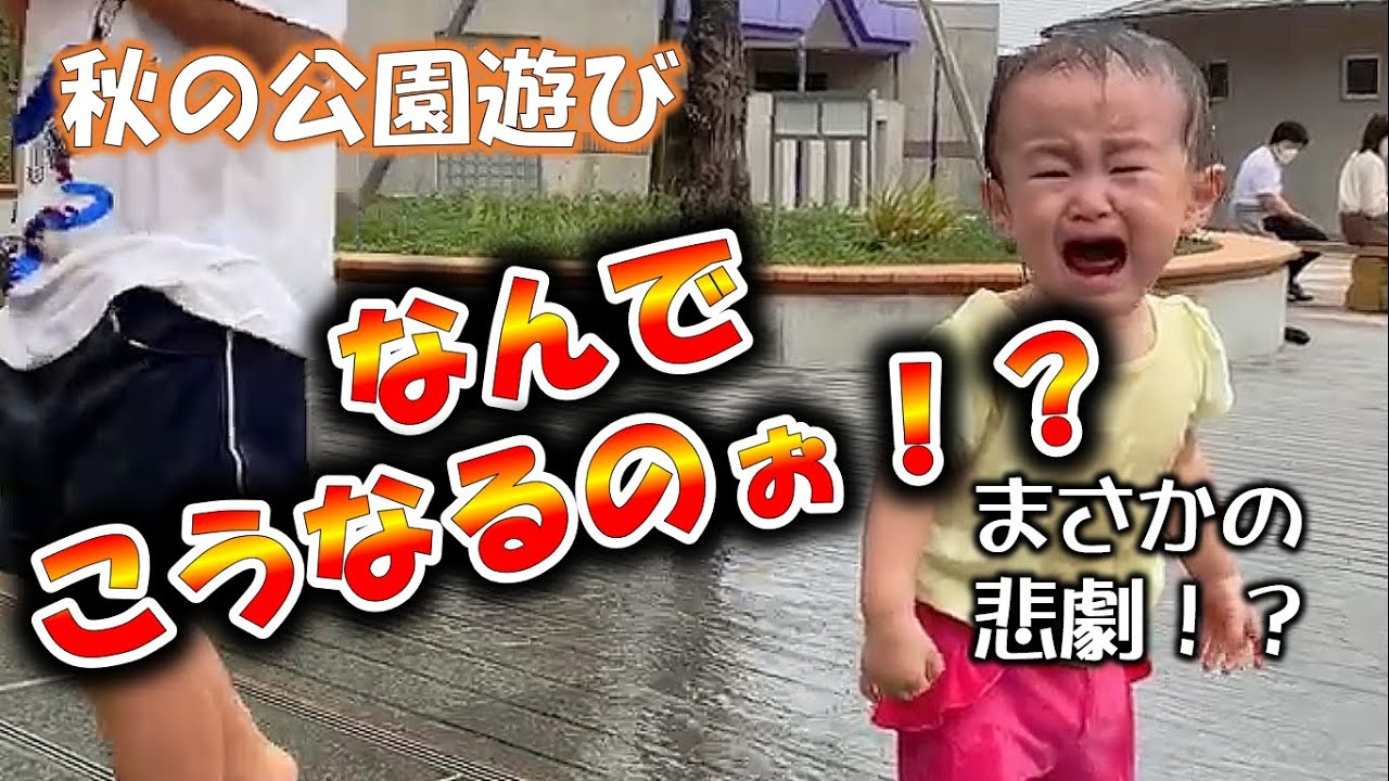 秋の公園での出来事★育児Vlog