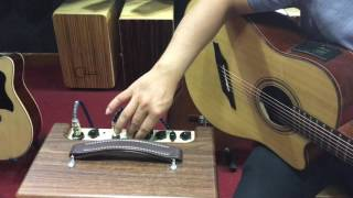 Test Ampli Guitar Acoustic