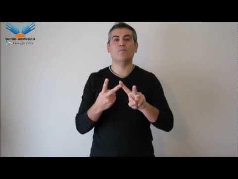 Renkler - işaret dili