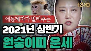 [수원/화성 점집] 애동제자가 알려주는 소름 돋는 2021년 원숭이띠 상반기 운세!
