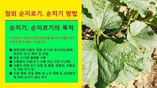 서울시 친환경농장 조안면 삼봉리 농장에 가다 - 주말농장 약도 및 가는 길