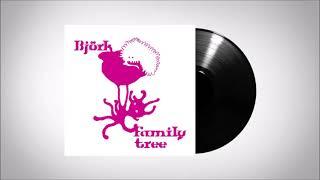 Björk : Fuglar (The Elgar Sisters)
