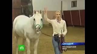 Репортаж НТВ о Культурно-Туристическом Комплексе 'Россия'