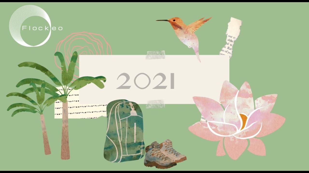 Happy New Year / Bonne année 2021