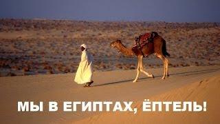 Бедуинский крик вблизи горы святой Екатерины(Египет)