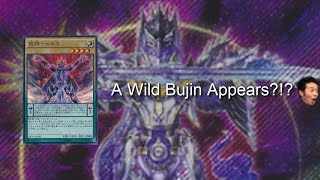 A Wild Bujin Appears?!? (Bujin Hiroko)