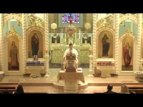 Christ the Savior Eastern Orthodox Cathedral (ACROD) Divine Liturgy - January 18, 2015