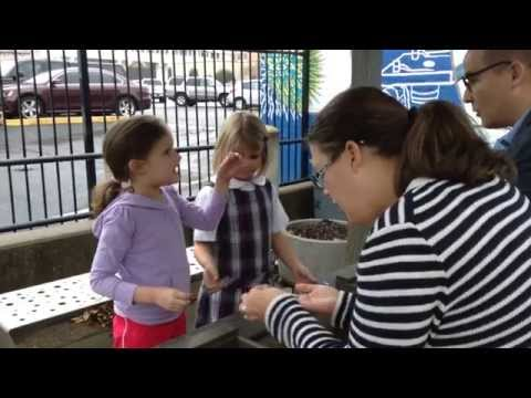 Winter Holiday Open House 12-11-2014 - Discovery Science Place - Tyler, TX
