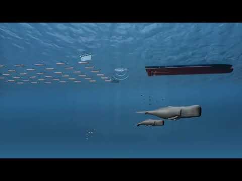 Offshore seismic exploration