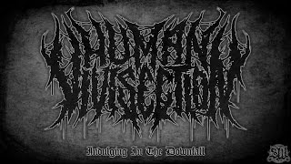 Human Vivisection - Indulging In The Downfall [Album Track] (2015) Exclusive Premiere