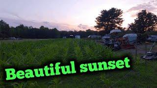 Sunset mowing