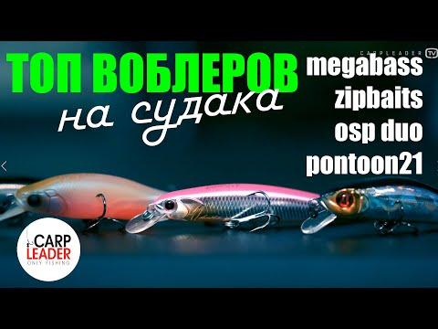 ТОП ВОБЛЕРОВ НА СУДАКА, обзор Карплидер