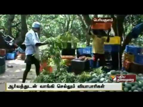 Demand for naturally ripened mangoes from Theni