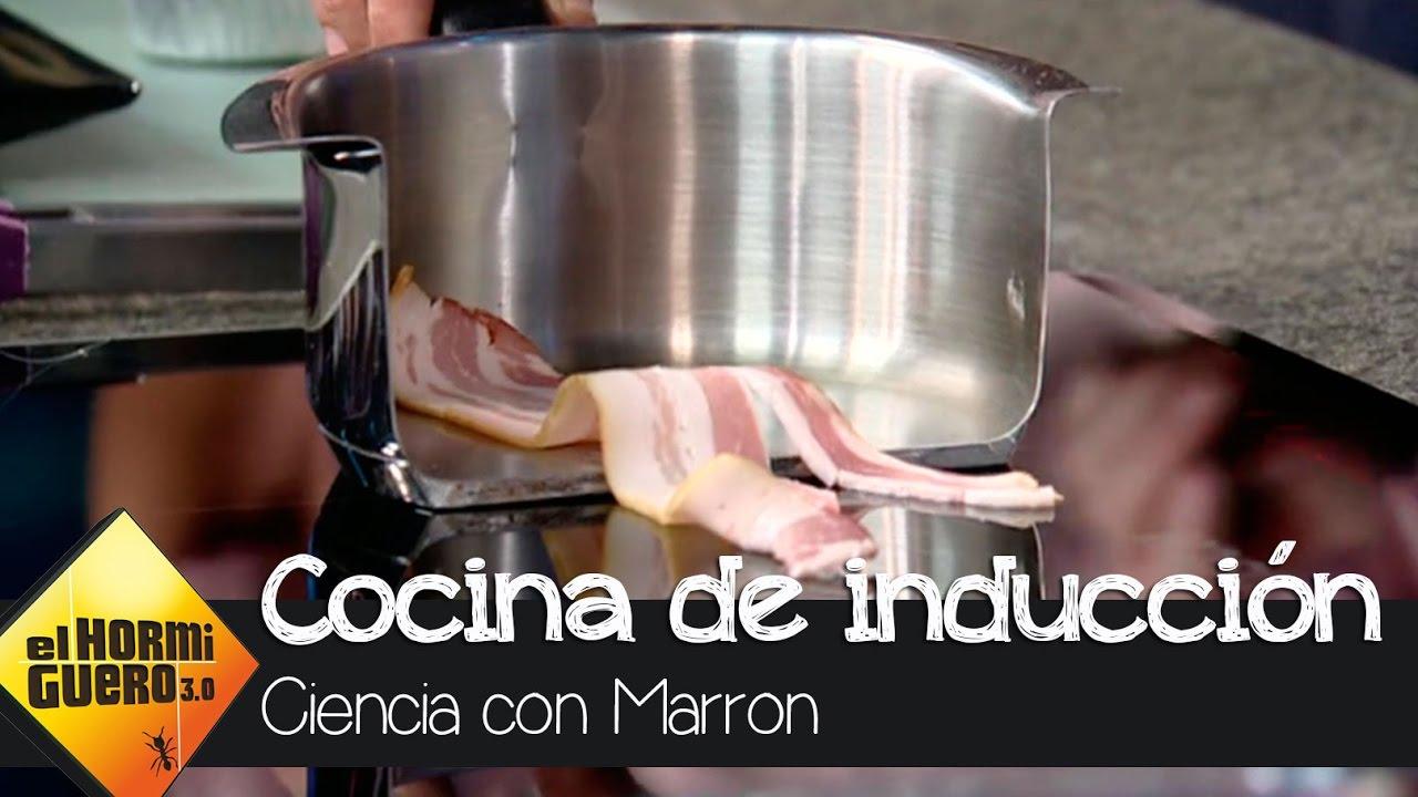 Descubre c mo funciona una cocina de inducci n el for Youtube cocina para todos