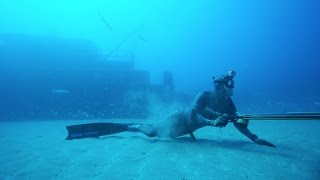 Spearfishing with the SPEARHEADS-- Carolina Blues -- E13