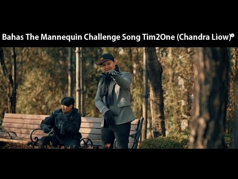 Bahas Lagu Tim2One Chandra Liow - The Mannequin Challenge Song