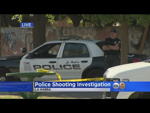 Armed Teen Shot, Wounded By La Habra Police