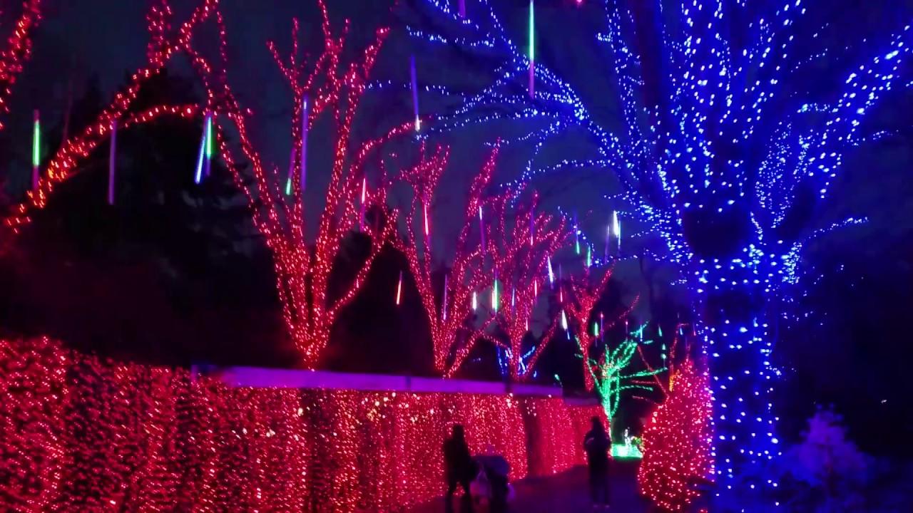 Zoo Lights Oregon Zoo