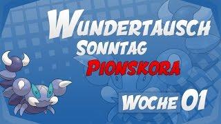 Wundertausch Sonntag - Woche 01 (Pionskora) - Pokémon Omega Rubin und Alpha Saphir (ΩR/αS)