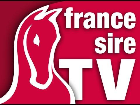 France Sire - Vente de Yearling d'Octobre - Arqana - J3