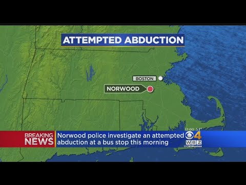 Police Looking Into Attempted Abduction In Norwood