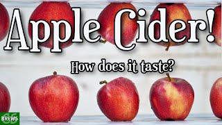 Apple Cider - Hard Cider - Can this be any good?