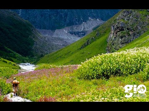 Valley of Flowers & Hemkund Sahib - YouTube
