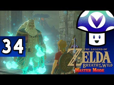 [Vinesauce] Vinny - Zelda: Breath of the Wild - Master Mode (part 34)