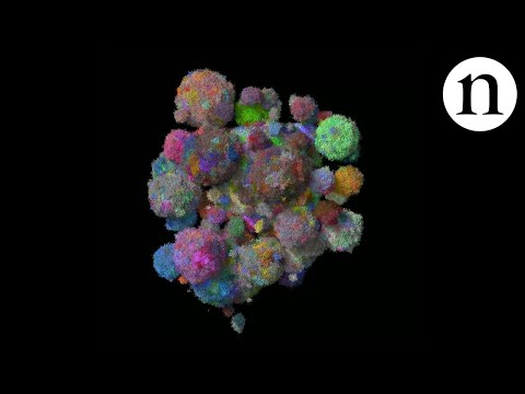 This 3D cancer model shows how tumours mutate