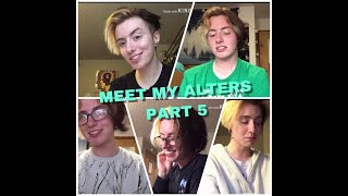 MEET MY ALTERS PART 5 | Aether System Alter Intros