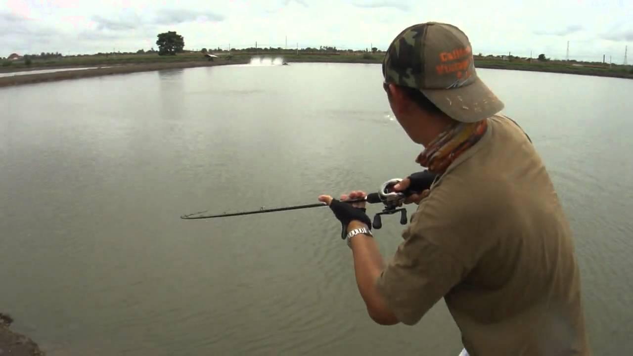 рыбалка видео shimano