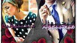 Gambar cover Faydee   Shelter your Heart   remix dj nadir bob