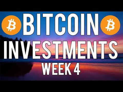 Bitcoin Investments Update | Week 4