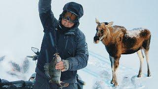 Поймали ОКУНЕЙ НАЛИМА И ЛОСЯ на Рыбинке Такая странная зимняя рыбалка на балансиры Ждем судака