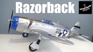 e flite p 47 razorback 1 2m   unbox and quick assembly