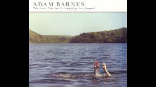 ADAM BARNES - A GOOD STORM