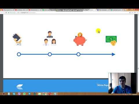 Сryptograin обзор успешного проекта WP 2 часть