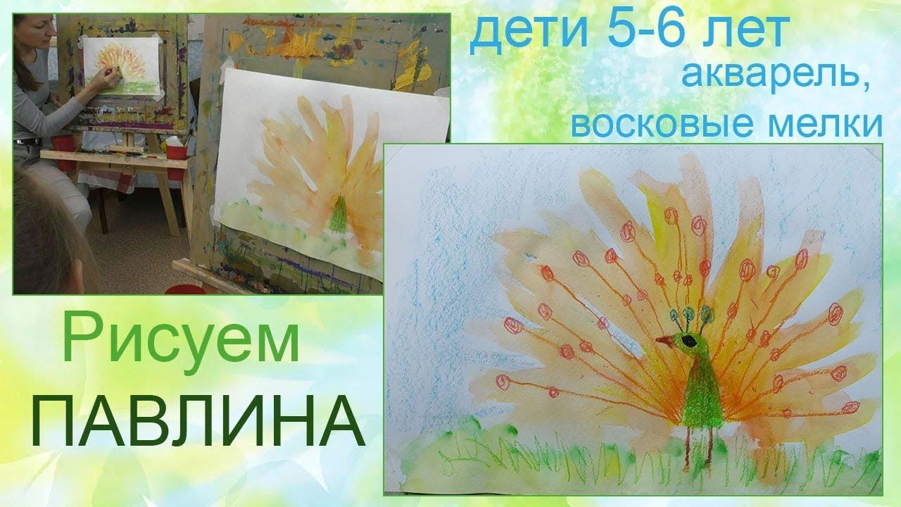 Рисуем павлина с детьми 5 6 лет | Школа рисования Ижевск