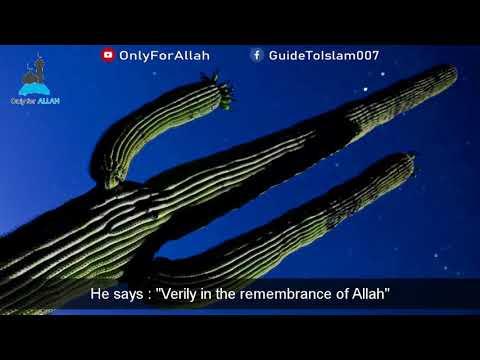 Love of This World: Sheikh Muhammad Hoblos
