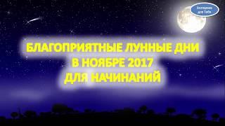 Благоприятные лунные дни в ноябре 2017 года для начинаний