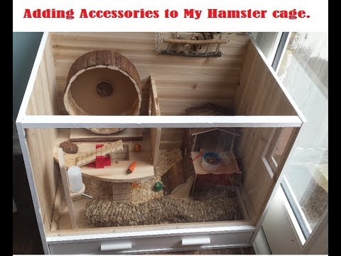 ADDING ACCESSORIES TO MY HAMSTER CAGE!!!!!!!!!!!!!!!!!!!!!