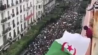 Algérie : Manifestation 15 mars 2019 contre le pouvoir !!