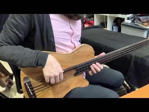 Rob Allen Mouse 30 Fretless Bass Test Drive