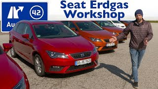 Seat Erdgas Workshop / CNG / TGI
