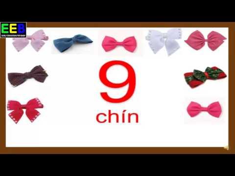 Dạy bé đếm số từ 1- 10 tiếng Việt và tiếng Anh
