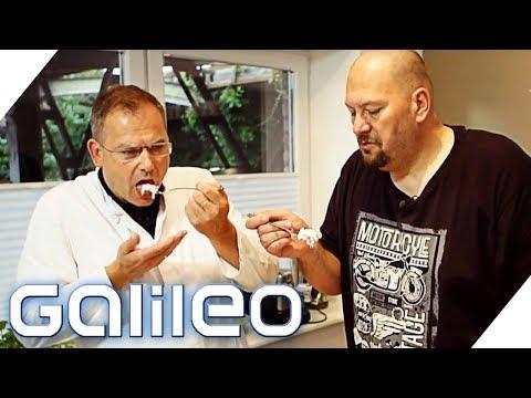 Jumbo Schreiner testet Fleischsalat   Galileo   ProSieben